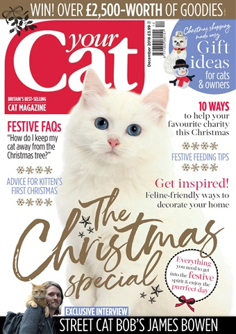 Your Cat issue Your Cat Magazine December 2018