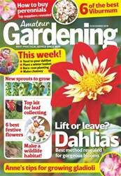 Amateur Gardening issue 10th November 2018