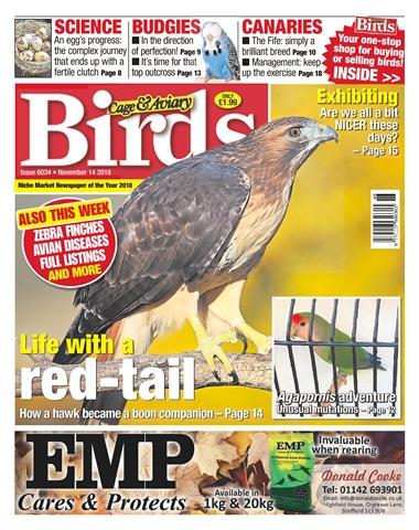 Cage & Aviary Birds issue 14th November 2018