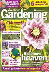 Amateur Gardening issue 17th November 2018