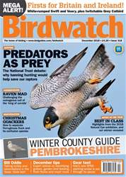 Birdwatch Magazine issue December 2018