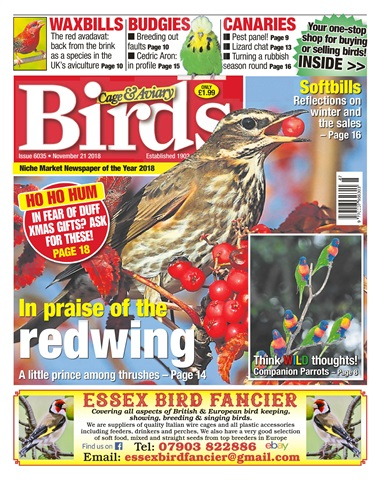 Cage & Aviary Birds issue 21st November 2018