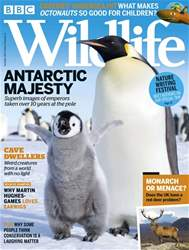 BBC Wildlife Magazine issue December 2018