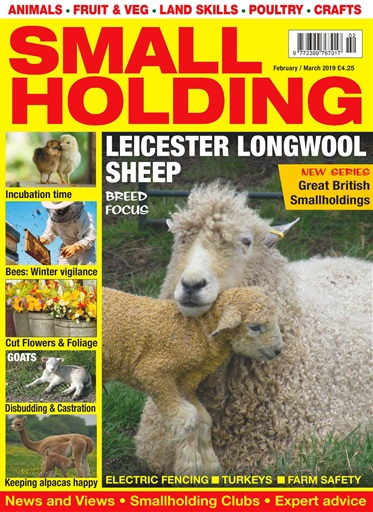 Smallholding Digital Issue