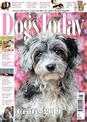 Dogs Today Magazine Magazine Cover