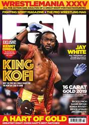 Fighting Spirit Magazine Magazine Cover