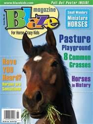 Blaze Magazine Magazine Cover