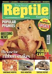 No.35 Popular Pygmie issue No.35 Popular Pygmie