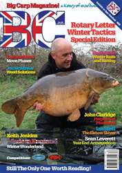 BigCarp 187 issue BigCarp 187
