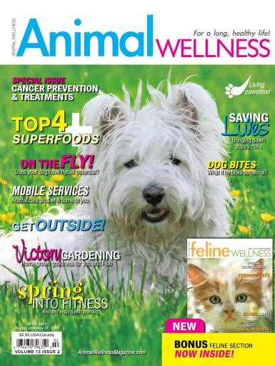 Animal Wellness Preview