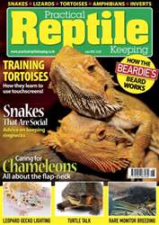 No.37 Training Tortoises issue No.37 Training Tortoises