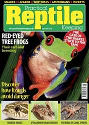No.39 Tree Frogs issue No.39 Tree Frogs