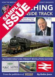Beeching (FREE SAMPLE) issue Beeching (FREE SAMPLE)