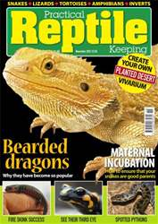 No.42 Bearded Dragons Keeping issue No.42 Bearded Dragons Keeping