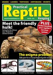No.24 The Big Tortoise issue No.24 The Big Tortoise
