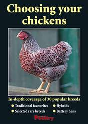 Choosing your chickens Magazine Cover