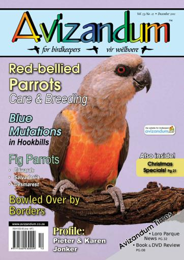 Avizandum Digital Issue