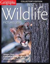 Best Wildlife Pictures 2013 issue Best Wildlife Pictures 2013