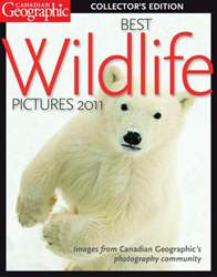 Best Wildlife Pictures 2011 issue Best Wildlife Pictures 2011