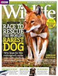 BBC Wildlife Magazine Magazine Cover