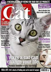 Your Cat Magazine September 2012 issue Your Cat Magazine September 2012