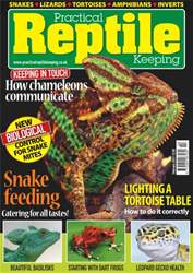 No.45 Feeding Snakes issue No.45 Feeding Snakes