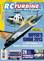 2013 issue 2013