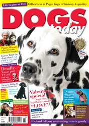 Dogs Today Magazine Magazine Cover