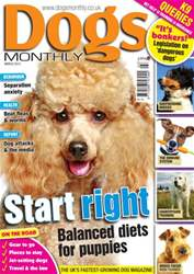 Dogs Monthly March 2013 issue Dogs Monthly March 2013