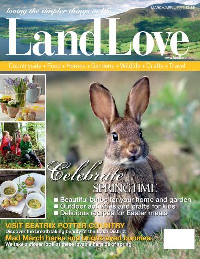 LandLove Magazine Preview