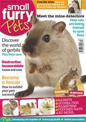 #7 The world of Gerbils issue #7 The world of Gerbils