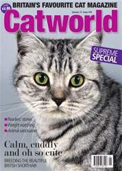 Catworld Issue 418 issue Catworld Issue 418