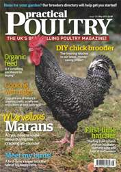 Marans - the dark egg May 2013 issue Marans - the dark egg May 2013