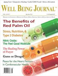 Well Being Journal Magazine Cover