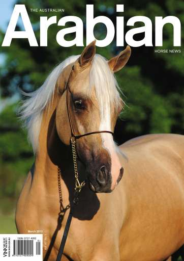 Australian Arabian Horse News Preview