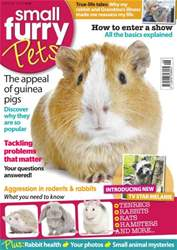 #8 Why are Guinea Pigs popular? issue #8 Why are Guinea Pigs popular?
