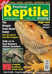 No.1 Dragons & Python Morphs issue No.1 Dragons & Python Morphs
