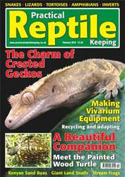 No.9 Crested Geckos Stream Frog issue No.9 Crested Geckos Stream Frog