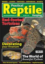 No.13 Beautiful Pythons issue No.13 Beautiful Pythons