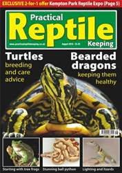 No.15 Bearded Dragons & Turtles issue No.15 Bearded Dragons & Turtles