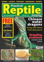 No.17 Chinese Water Dragons issue No.17 Chinese Water Dragons
