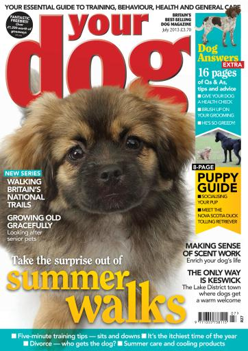 Your Dog Digital Issue