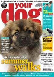 Your Dog Magazine July 2013 issue Your Dog Magazine July 2013
