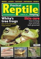 No.18 White's Tree Frogs issue No.18 White's Tree Frogs