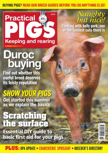 Practical Pigs Preview