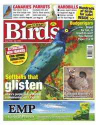 Cage & Aviary Issue 5759 issue Cage & Aviary Issue 5759