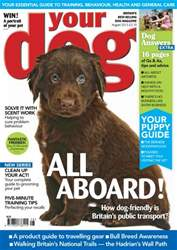 Your Dog Magazine August 2013 issue Your Dog Magazine August 2013