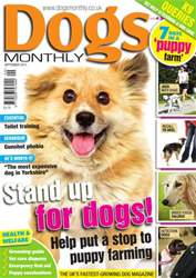 Dogs Monthly September 2013 issue Dogs Monthly September 2013