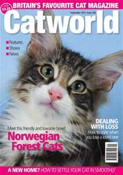 Catworld Issue 426  issue Catworld Issue 426