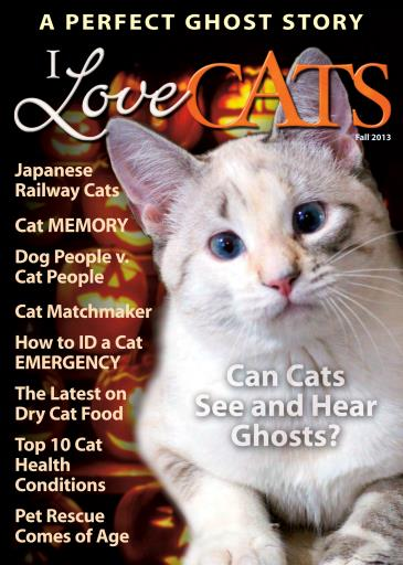 I Love Cats Digital Issue